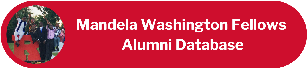 Mandela Washington Fellows Alumni Database button