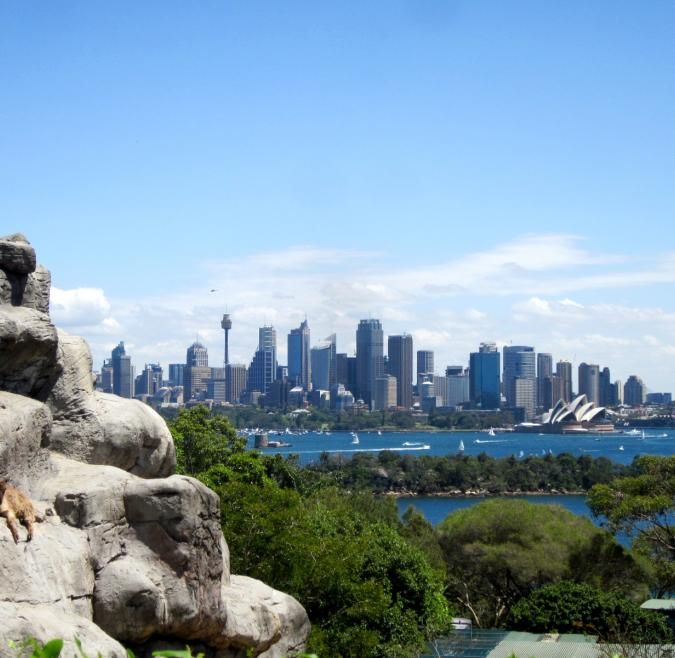 IES: Sydney Summer - Society, Sport, & Leadership