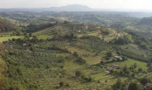 Summer: Archaeological Field School in Italy