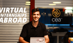 CEA virtual internships