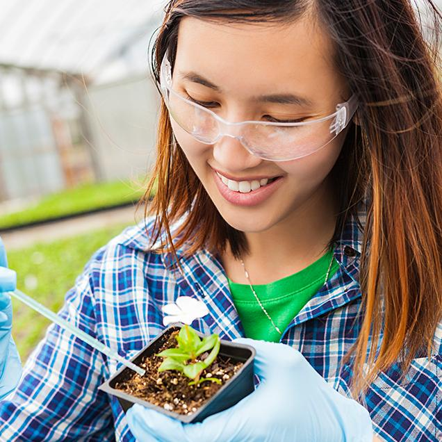 Rutgers Global – Internships, biology student takes samples from a plant