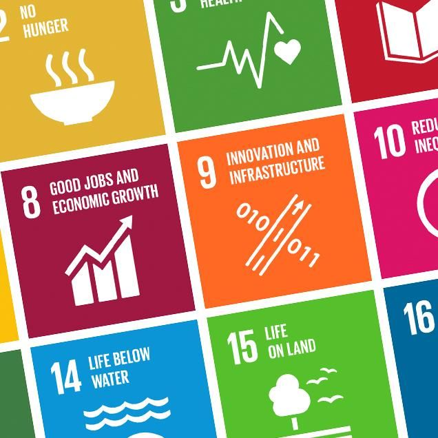 Rutgers Global - UN SDG Definitions, SDG table