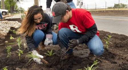 Rutgers students planting in garden